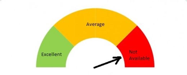 CIBIL Score Status